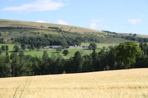 Scenery from the footpath to the Old Kirkyard